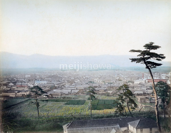 70621-0009 - View on Kofu