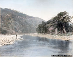 71205-0016 - Logs in Hozugawa River