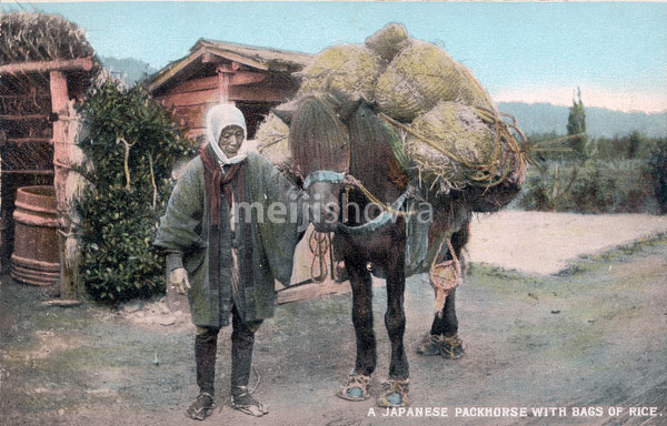80220-0008 - Pack Horse Driver