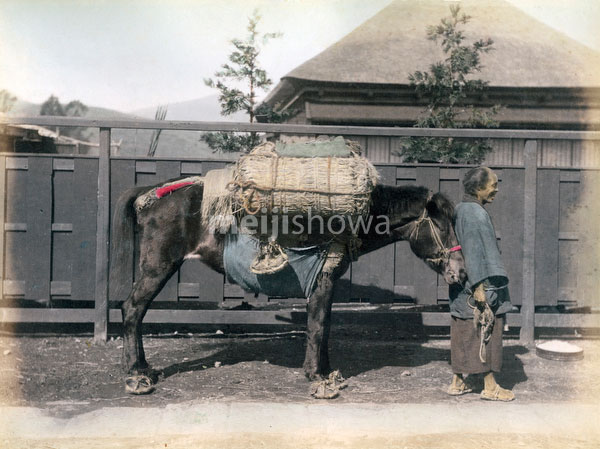 80901-0018 - Pack Horse Driver