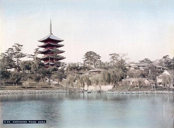 70602-0003 - Sarusawa Pond