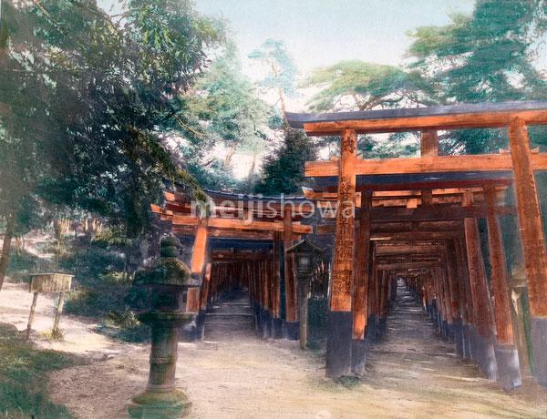 70614-0018 - Fushimi Inari Taisha