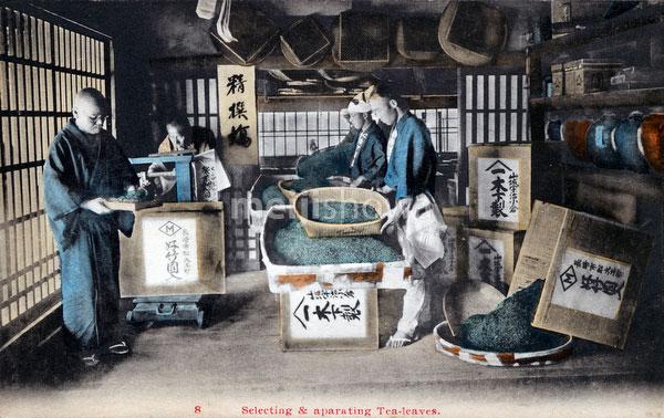 70710-0004 - Sorting Tea Leaves