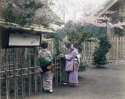 70820-0002 - Women in Kimono