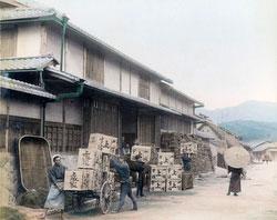 71205-0001 - Tea Warehouse