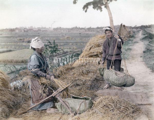 71205-0009 - Threshing Rice