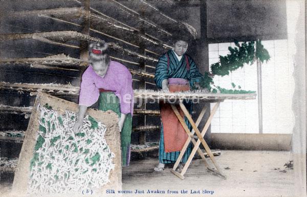 80107-0035 - Silk Farming