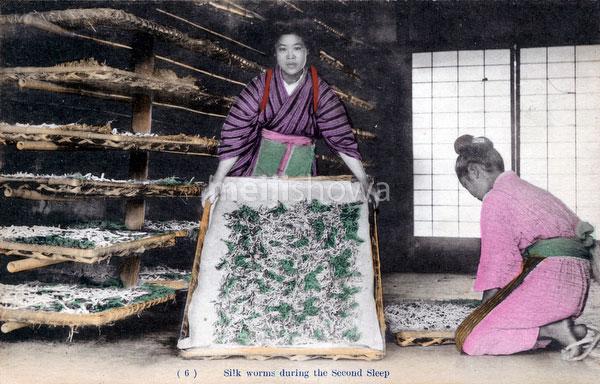 80107-0036 - Silk Farming