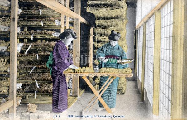 80107-0037 - Spreading Silkworms