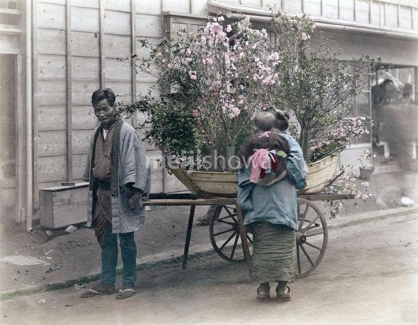 80115-0010 - Flower Vendor