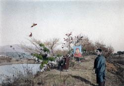 80115-0041 - New Year - Flying Kites