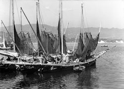 80121-0020 - Fishing Boats