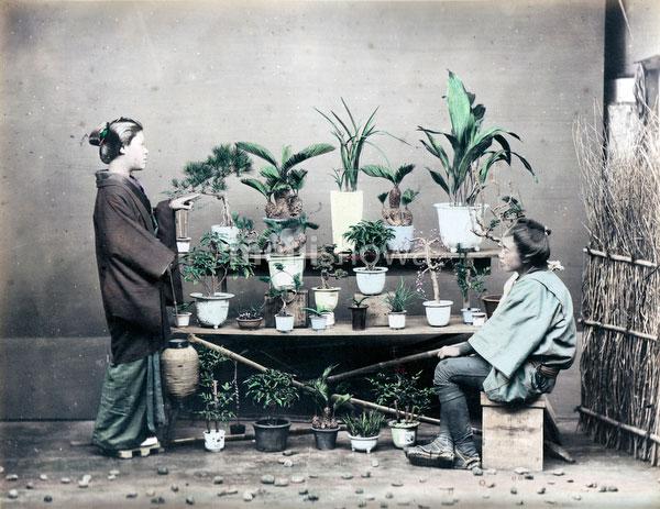 80129-0035 - Plant Vendor