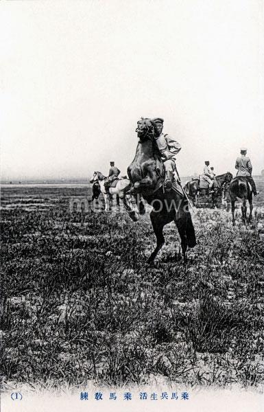 70130-0024 - Cavalry Practice