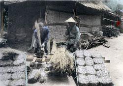 100914-0010 - Making Straw Layers