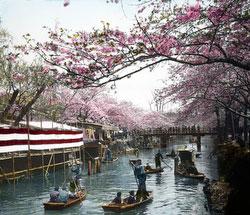100910-0032 - Edogawa River