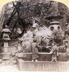 100908-0010 - Nara Deer Fountain