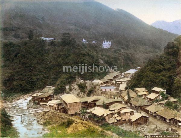 101105-0007 - View of Tonosawa