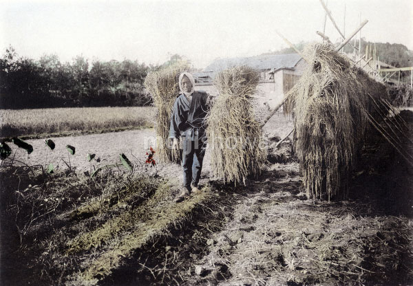 110609-0008 - Farmer Carrying Rice