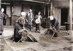110609-0009 - Threshing Rice