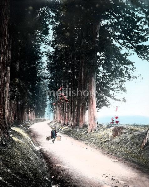 110613-0018 - Nikko Road