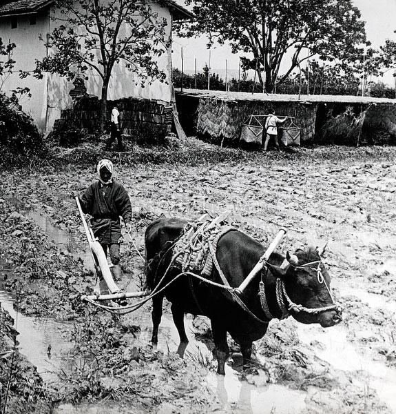 110613-0056 - Plowing