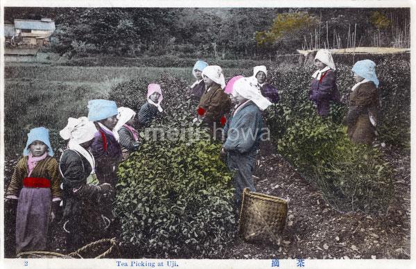 110707-0039 - Tea Pickers