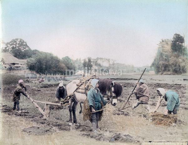 70208-0014 - Plowing
