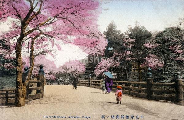 130125-0032 - Benkeibashi Bridge