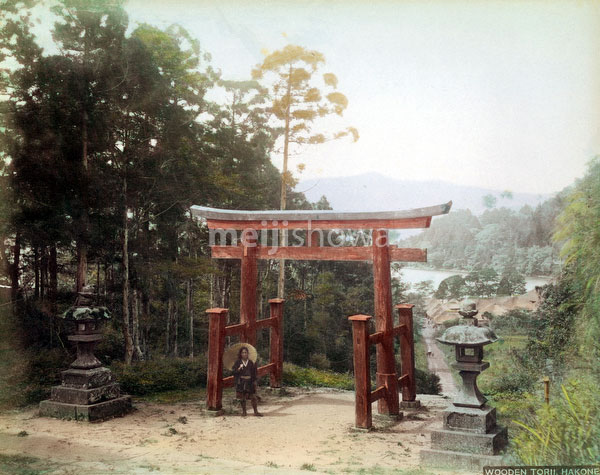 100128-0001 Hakone Torii