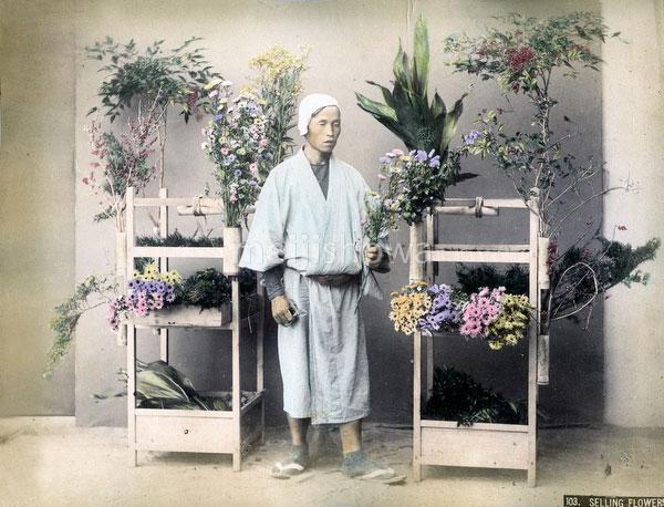 80303-0011-PP - Flower Vendor