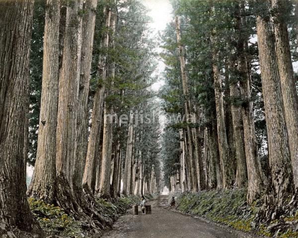 120207-0027-PP - Nikko Road