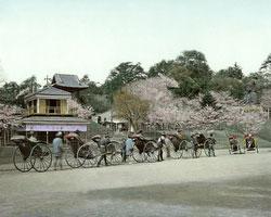 120207-0081-PP - Ueno Park