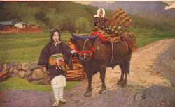 40512-0003 - Farmer with Ox