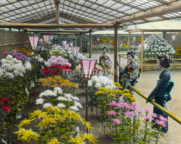 140302-0001 - Flower Exposition
