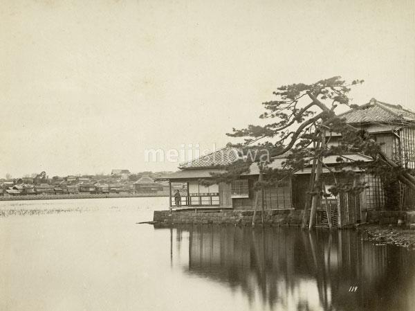 140916-0099-PP - Shinobazu Pond
