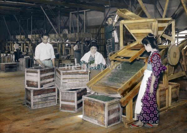 140303-0003 - Tea Factory