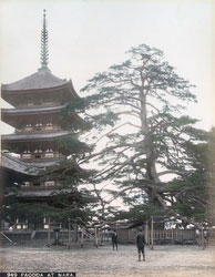 70219-0016 - Kofukuji Pagoda