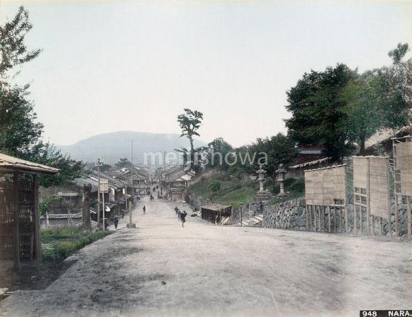 70219-0017 - View on Nara