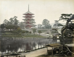 140303-0012 - Sarusawa Pond