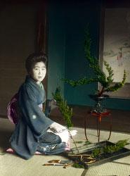 160201-0008 - Ikebana