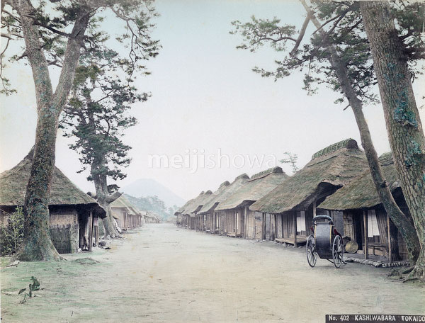 70219-0027 - Thatched Roofs