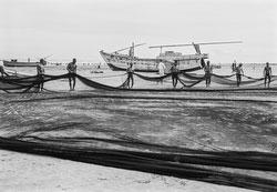 160202-0024 - Fishermen at Work
