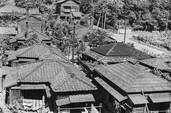 160202-0038 - Tokyo Rooftops