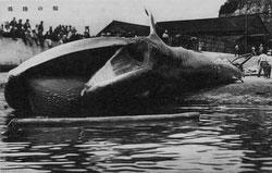 160301-0014 - Landing a Whale