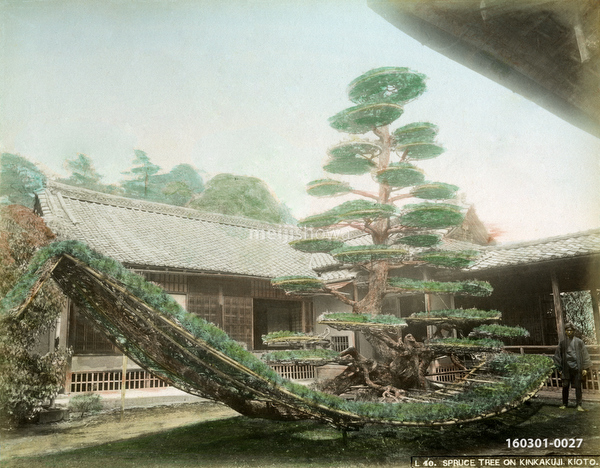 160301-0027 - Kinkaku-ji Garden