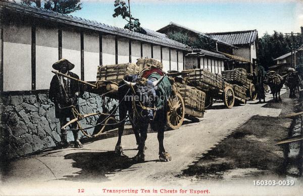 160303-0039 - Shipping Tea
