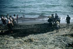 160308-0010 - Fishermen at Work