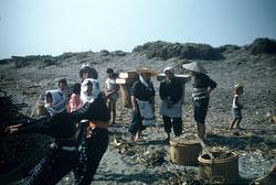 160308-0014 - Fisherwomen at Work