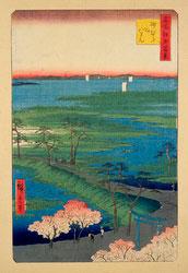 131003-0029-OS - Cherry Blossom and Torii